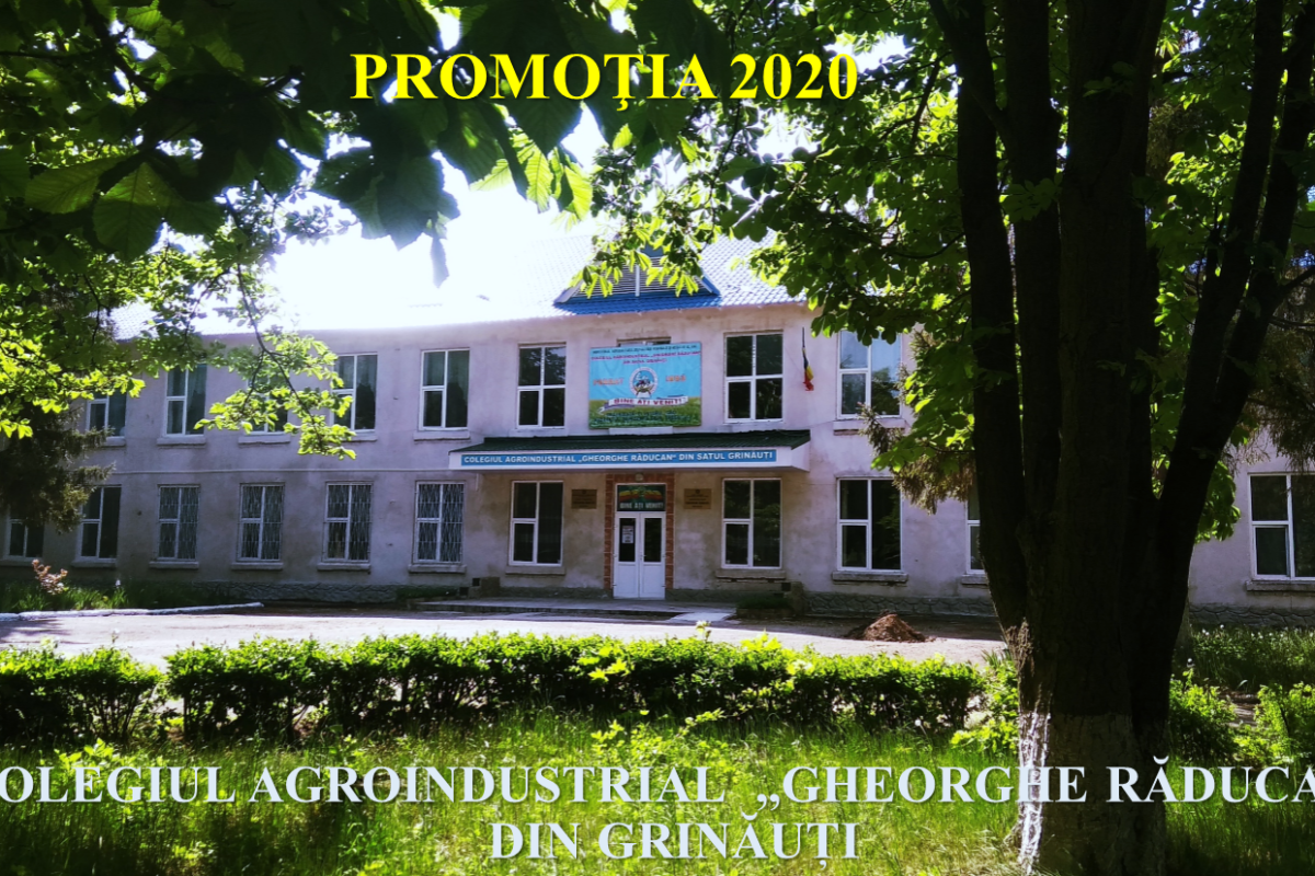 Colegiul Grinauti